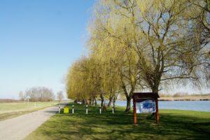 tó (4)